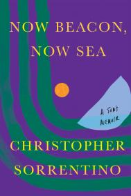 NOW BEACON, NOW SEA by Christopher Sorrentino